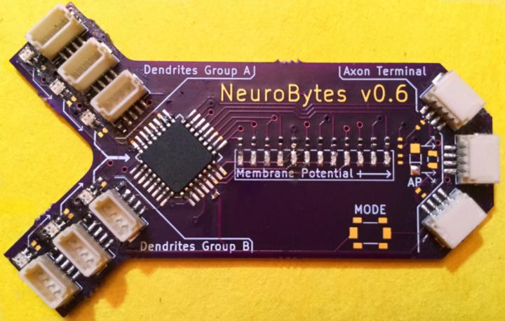 NeuroBytes Simulate Dendrite to Axon Input/Output