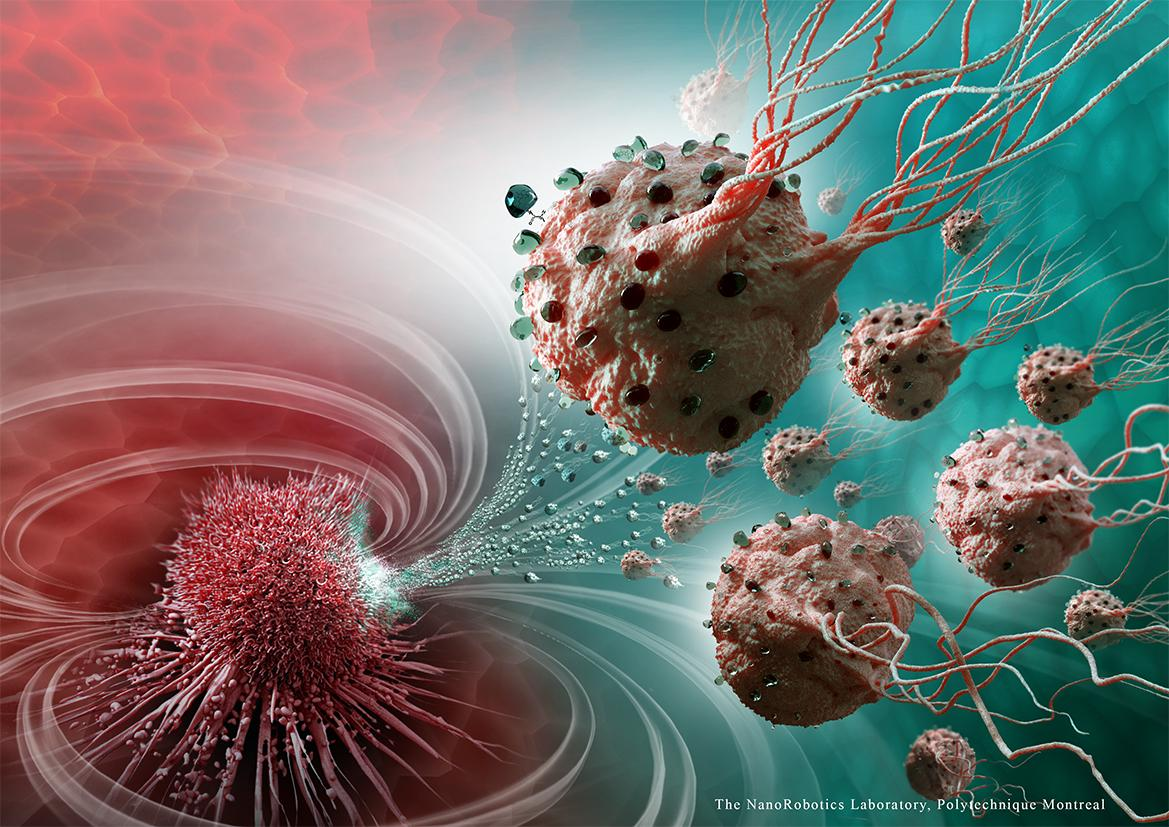 Nanobots Fight Cancerous Cells