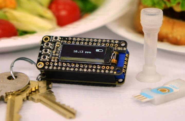 iEAT – A Powerful Keychain Detector To Detect Food Allergens