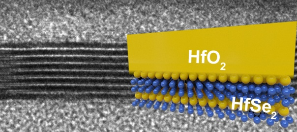 enlarged cross-section of an experimental chip made of ultrathin semiconductors