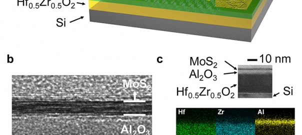 A new type of transistor (a) harnesses a property called negative capacitance.