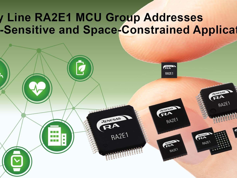 RA2E1 – 48MHz Arm® Cortex®-M23 Entry Line General Purpose Microcontroller