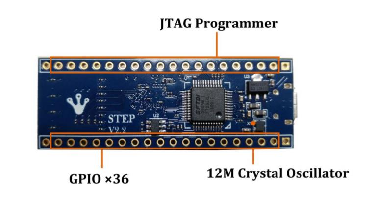 Back View FPGA Development Board